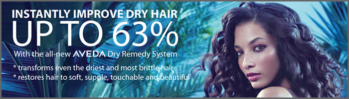 aveda-dry-remedy-2011-banner3.png