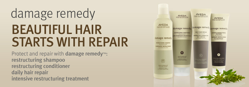 d-201202-collectionbanners-haircare-damageremedy.jpg